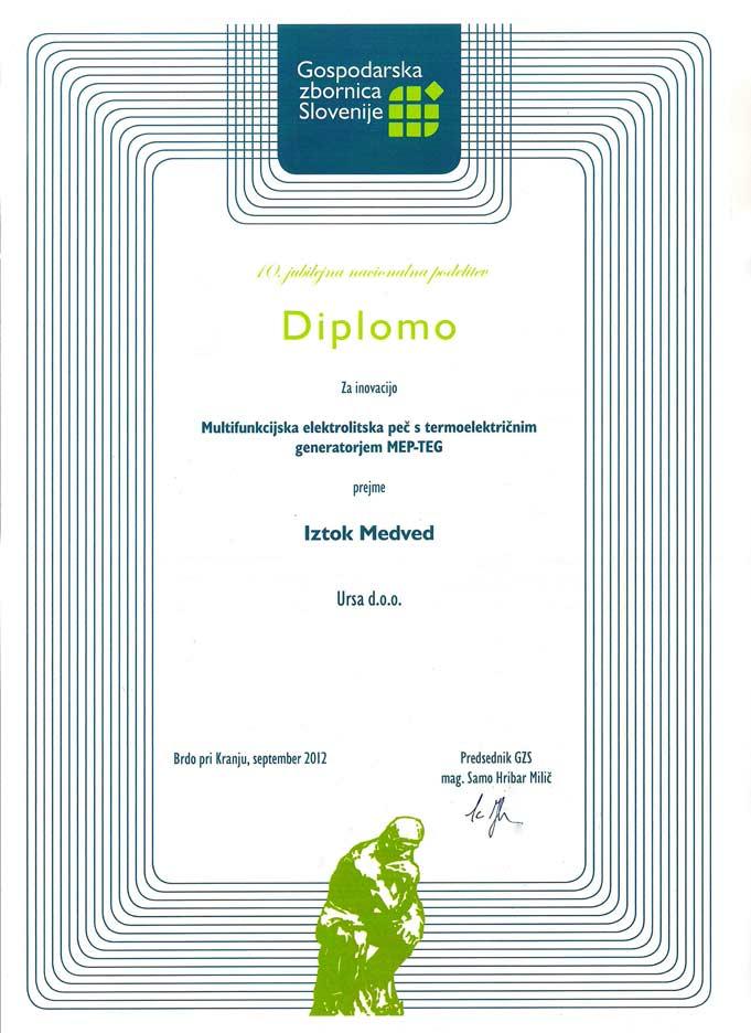 Iztok-Medved---diploma-MEP-TEG